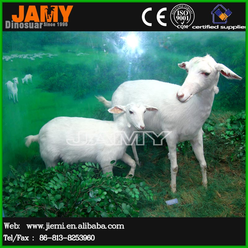 Realistic Rubber life size sheep modle