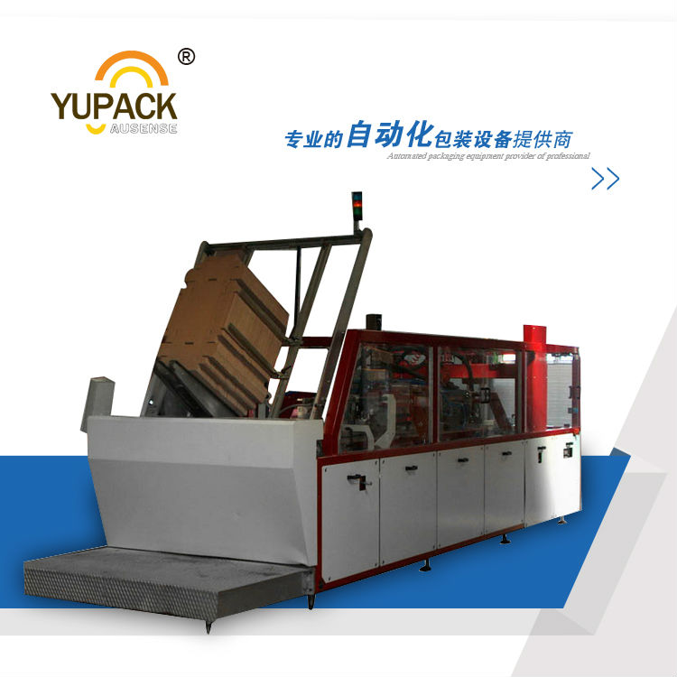 Fully Automatic Wrap Around Case Packer