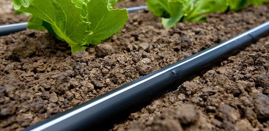 professionnel irrigation goutte goutte bande fabrication. Black Bedroom Furniture Sets. Home Design Ideas