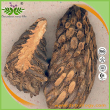 High quality Basket Fern Extract 10:1 for health supplement