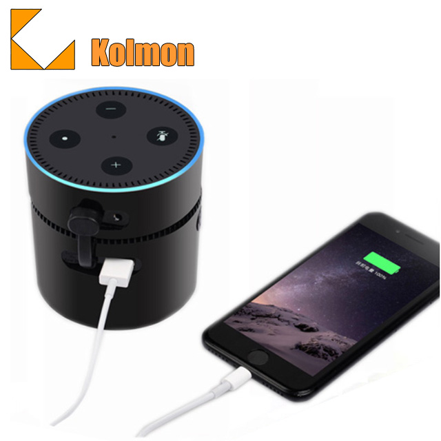 Portable 10000mAH High -speed Charging Power bank Battery Base for 2nd amazon echo dot