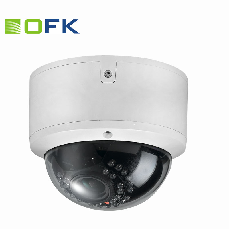 H.264 30pcs LEDs Outdoor Vandalproof Dome Hi3516C P2P Network POE IP Cameras CCTV 2.0MP