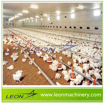LEON series hot price wholely automatic poultry farm equipments for livestock