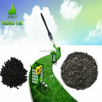 Nut shell activated carbon hot sales