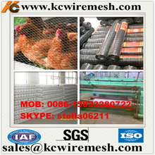 Factory!!!!!!! Kangchen hexagonal wire netting/chicken wire mesh/black vinyl coated poultry netting