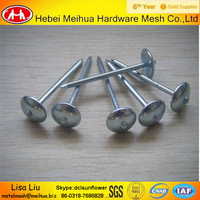 Roofing nails with washer cheap roofing nails galvanized roofing nails price