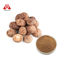 Reasonable Price Lentinus Edodes Mycelium Extract