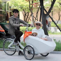 cargo bike New design appearance tricycle cargo bike