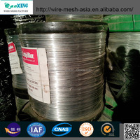 Galvanized Iron Wire (Electro galvanized or Hot dipped galvanized)