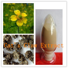 Cat's Claw Extract, Catclaw Buttercup Root Extract, 3%,4%,5%Alkaloids (Latin name: Ranunculus ternatus Thunb)