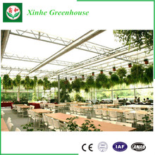 Low cost Tunnel PE Plastic Film Agricultural Greenhouse for tomatoes greens