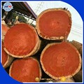 Export Vietnam low price rosewood logs