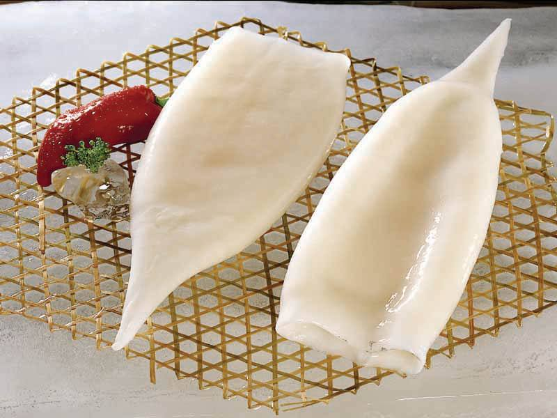 Best seafood appetizers frozen squid tube u5 u7 u10