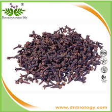 Manufacturer high quality Lilac Extract 20:1 with free sample