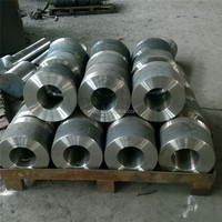 Customized special material Tube Mill Roller rough roll