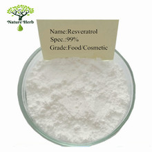 Wholsale price bulk pure natural trans resveratrol 98% 99%
