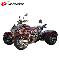 Fashion Water and Land ATV. Electric Starter 300CC Racing ATV for Sale.