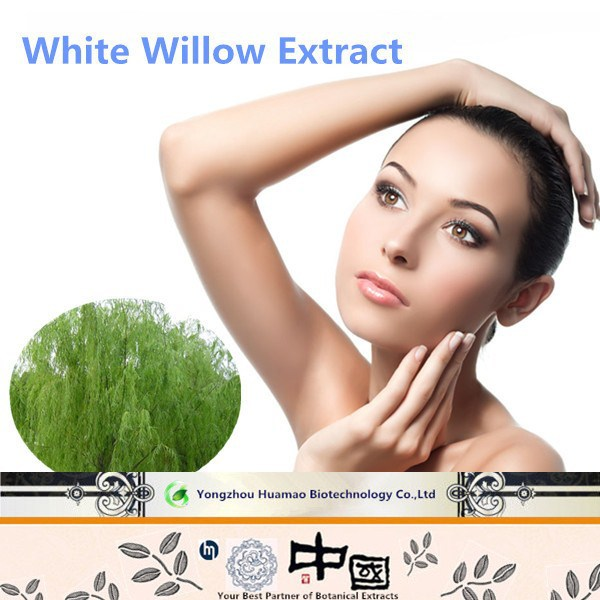 Free testing sample made herb medicine ingredients China supplier anti-rheumatism white willow bark p.e. salicin extract powder