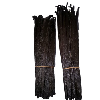 Factory supply high quality  vanilla beans wholesale