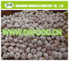/product-detail/fresh-high-quality-natural-garlic-for-sale-normal-white-garlic-dehydrated-garlic-60265152623.html
