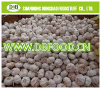 fresh high quality natural garlic for sale / normal white garlic / dehydrated garlic