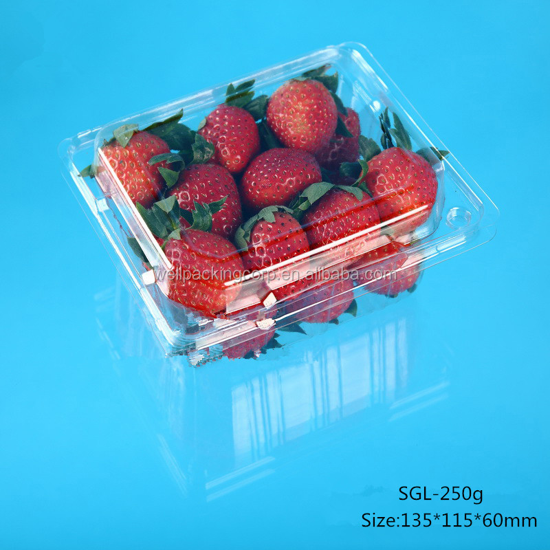 2016 New Style Fod grade Disposable Plastic Strawberry Packing Box with vent hole