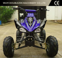 110CC/125CC Sports ATV/Quad Bike