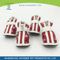 Lovoyager 2015 all for small dogs lovely shoes with CE certificate