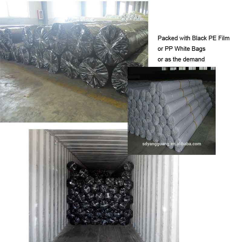 Manufacturer geocomposite three-dimensional geomat drain net