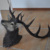 Deer Head Carving for Decoration