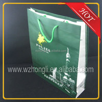 Hot sale custom printing shopping Paper Bag with handles