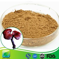 EU standard supply free sample Lingzhi Extract Powder made in China