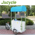 Trolly freezer ice cream cart with wheels