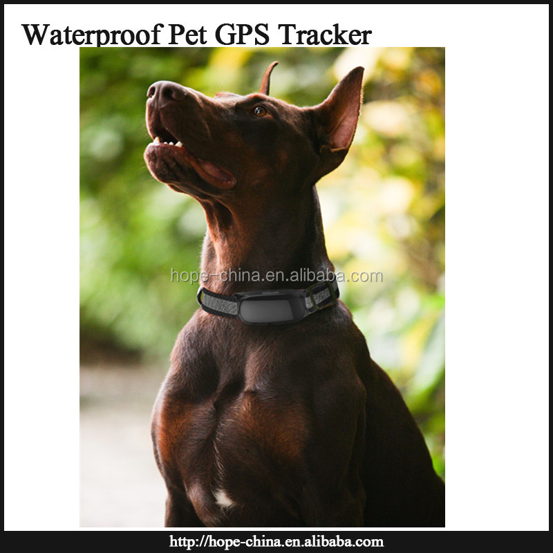 waterproof Real Time GSM/GPS Dog Collar Tracker Pets Hidden GPS tracker for med/Large Pet, Kid, Cat Dog with Collar