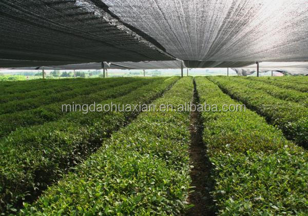 Shading Net insect net for Agricultural Greenhouse