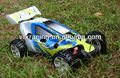 Super crocodile 1/5 Scale 2WD Gas Powered Buggy