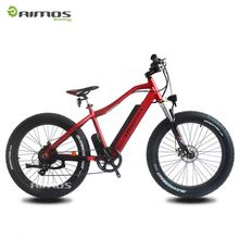 1000w central rear motor snow ebike /electric big tire bike made in china