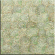 Light green capis shell for wall shell paper for decoration