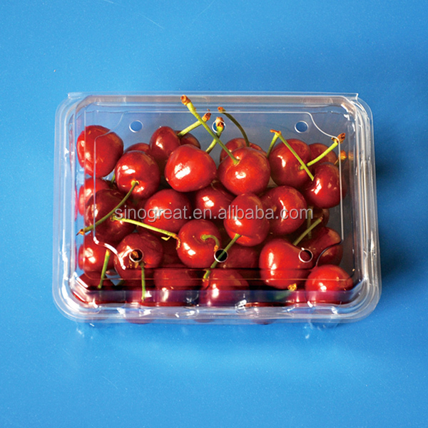Disposable Fruit Cherry Tomatoes Tray