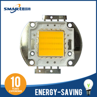 Bridgelux 45ml 30w cob led flood light