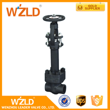 WZLD International Agent ANSI/ASTM Standard Cast Steel Iron Cryogenic Globe Valve