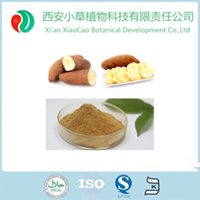 Hot food and Beverage additive yacon syrup extract powder/Smallanthus sanchifalius powder CADY