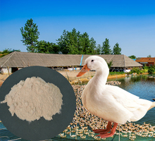 Feed Grade Antibiotic poultry feed additives
