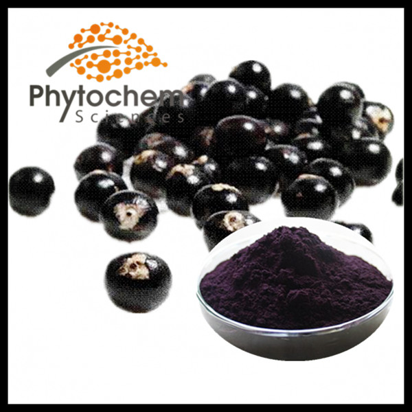 Acai berry extract powder juice powder