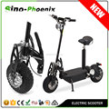 EVO Folding Electric Scooter with LED light ( PES01-800W Front&Read LED Light System& Meter)