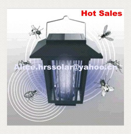 Solar mosquito killer light