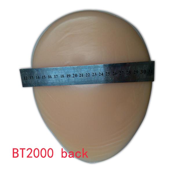 BT2000back 600.jpg