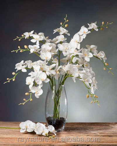 China supplier real touch artificial orchid plants