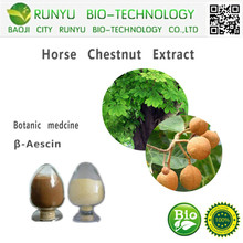 Herbal Extract Aescin 20% 40% 98% Horse Chestnut Extract