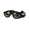GW030 Fold Safety Sport Goggles CE